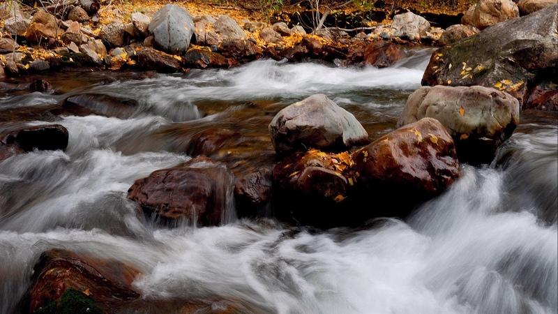 Nature en Images:  30 superbes photos