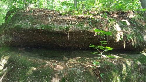 Le Rocher dit de DIDACUS dans les bois de Haegen. (Albert Fagioli)