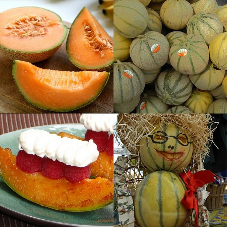 Verrines avec du melon