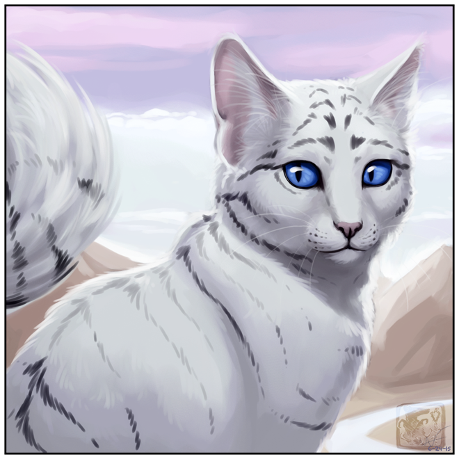White Cat Project Guide