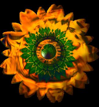Fleurs tissu série 4