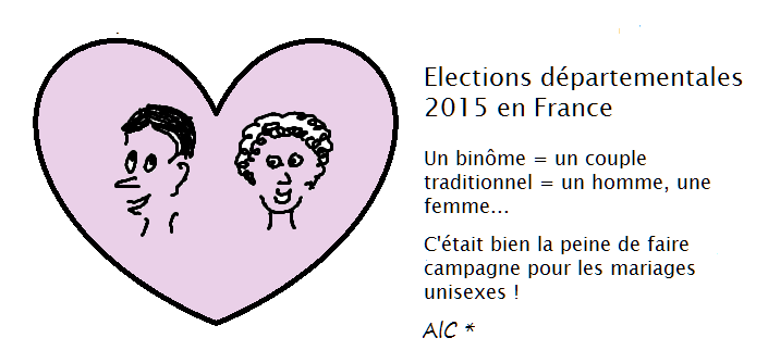 Elections départementales 2015 en France