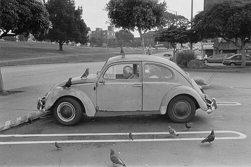 07 -Dans le monde, portraits en voiture