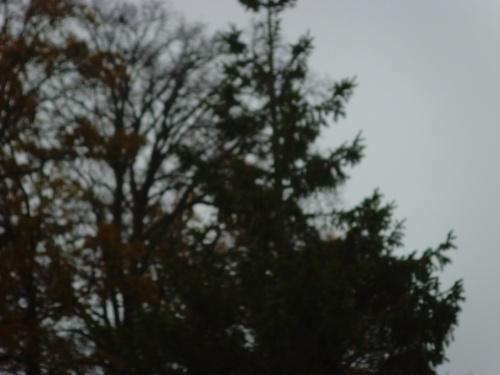 TEMPS DU JOUR  23/11/2012