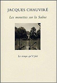 Les mouettes sur la Saône par Chauviré