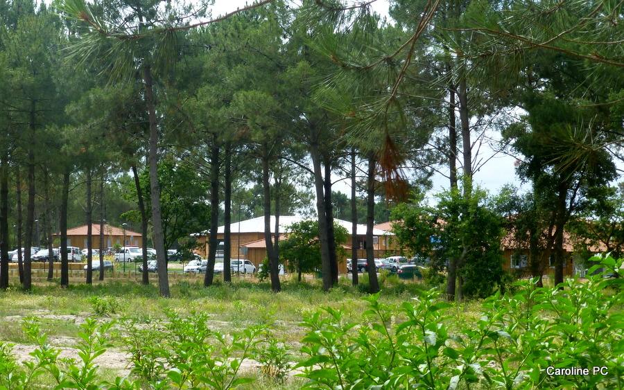 Les terrains de Mimizan à vendre