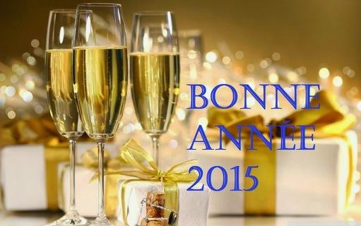Une bonne et heureuse année 2015 !!