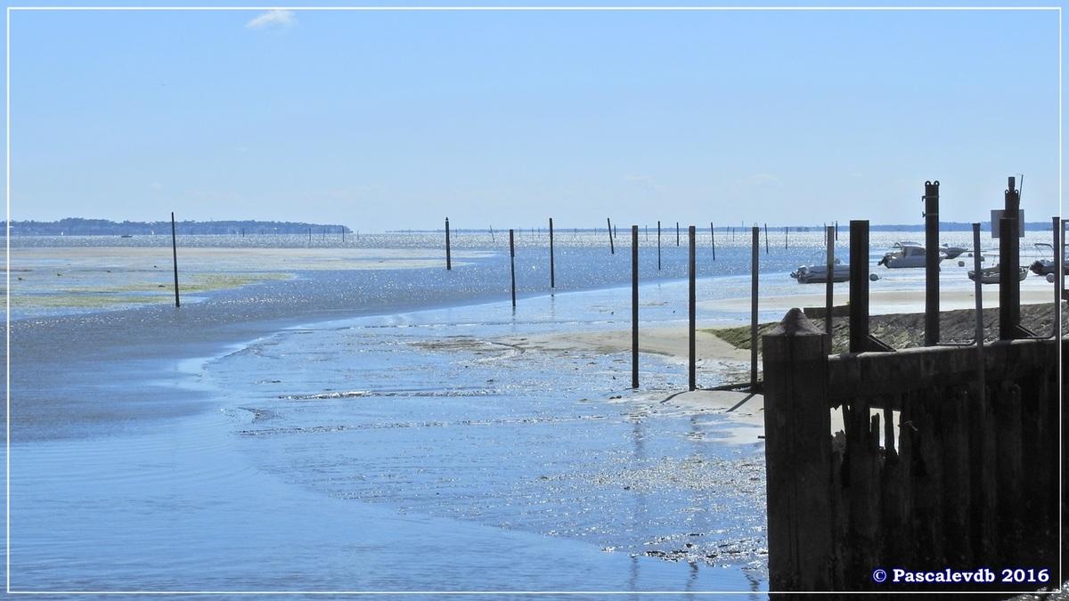 Du port de Cassy au port du Bétey - Mai 2016 - 2/3