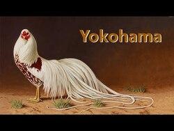 """LA FAMILLE """"YOKOHAMA3"""