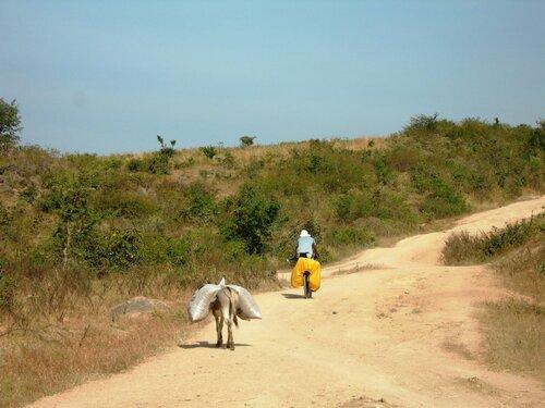 Direction Garoua et les Monts Mandara