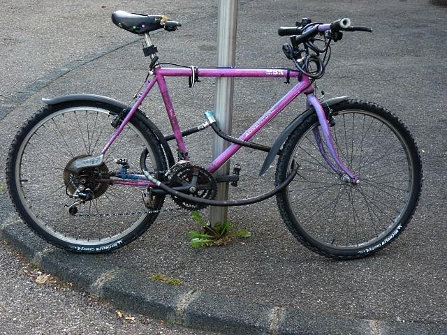 Vélo à Metz 7 mp1357 31 01 2011