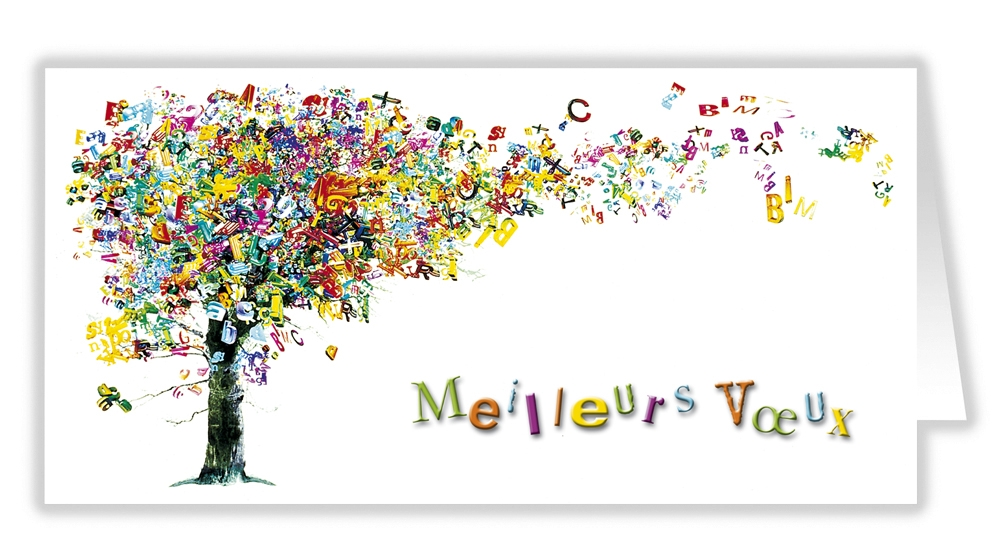 VOEUX pour 2014 - Saint vincent de Paul, Sin le Noble