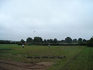 cerf volant 2011 08