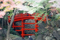 Koishikawa Kôrakuen : 小石川後楽園! 2