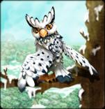 snowy_owl_card