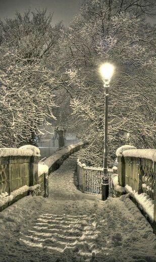 C'est  l'hiver  .