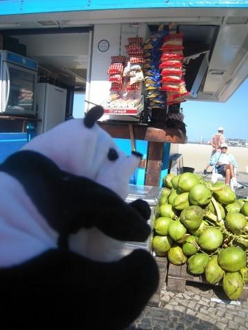 un panda à Rio 012