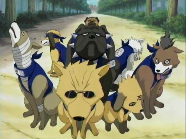 chiens de kakashi
