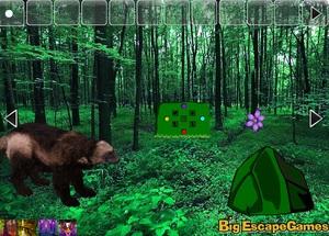 Jouer à Big hunting land escape