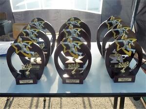 Fédération - Championnat individuel jeunes et féminines 2018