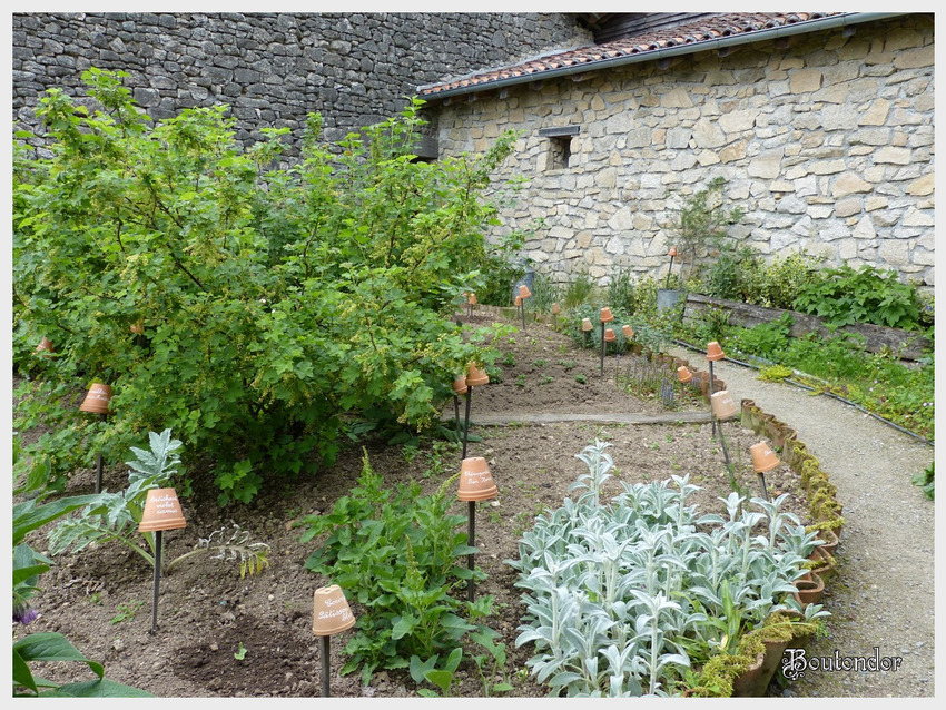 Montrol-Sénard -Le jardin de grand-mère(87 haute-vienne)