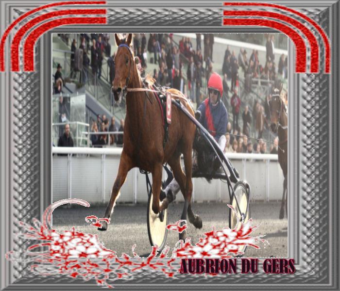 aubrion Du Gers