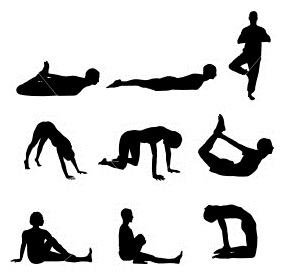 postures de base
