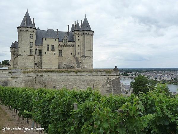 P1160186 chateau de saumur 3