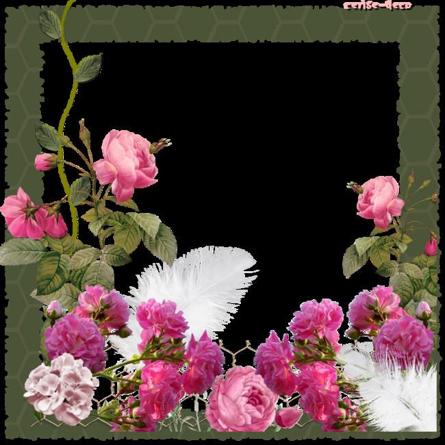 cadeau : nouveau cluster : jardin de roses et vos gifs faits par vous à partir de mes clusters