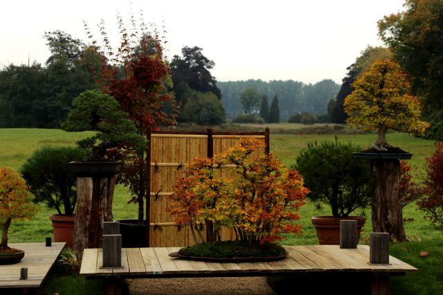 Les Journées des Plantes au Parc de Beervelde : 10 X2 entrées à offrir