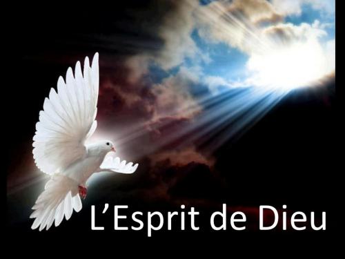 ESPRIT172242426335076418_n.jpg