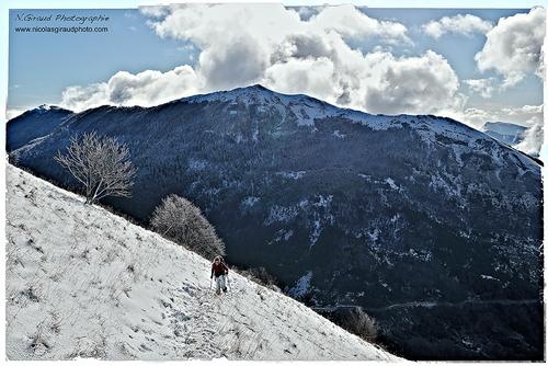 Cousre hivernale au Veyou
