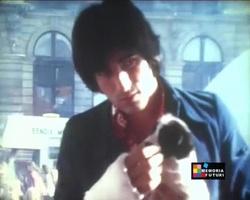 Juillet 1973 : L'accident de chameau de Ringo !