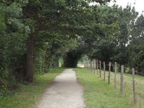 Autour d'Ancenis, la promenade de l'île Mouchet