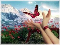 La vie...l'espoir