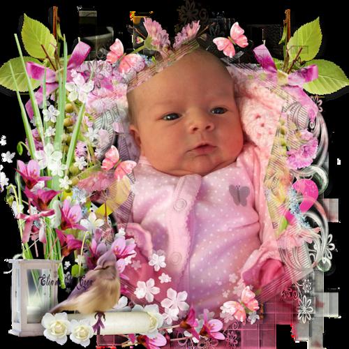 mes bébé