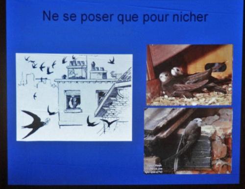 Une conférence de la LPO à Marcenay...