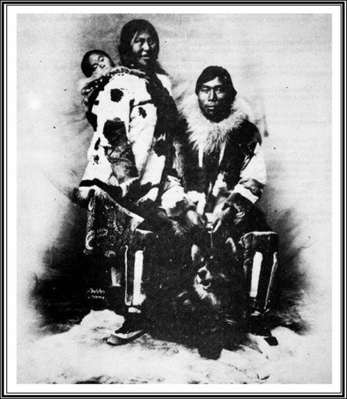 Quelles sont les origines du Husky ?
