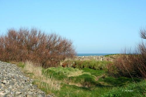 Omonville-la-rogue au phare de Jardeheu