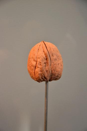 2014.04.06 Musée de la noix, Notre Dame de l'Osier (Isère, Rhone-Alpes)