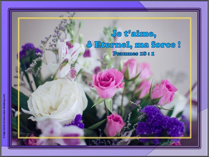 Je t'aime ô Eternel, ma force - Psaumes 18 : 2
