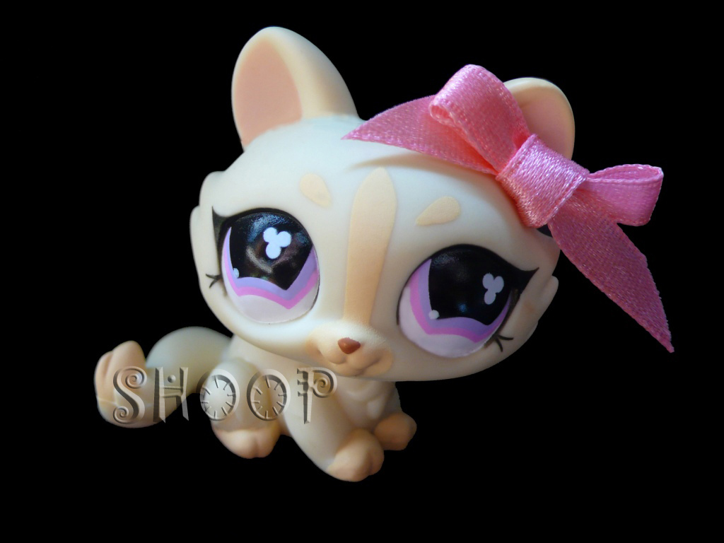 LPS 848