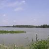 Les étangs de la Dombe