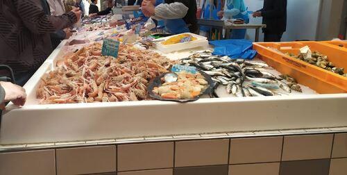 Les halles aux poissons de Rochefort s/mer