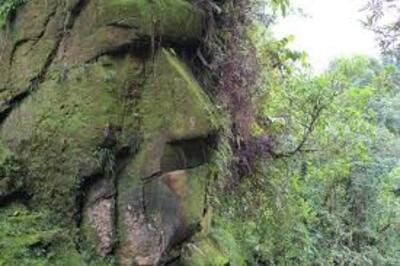 Le Gardien de l'Amazonie