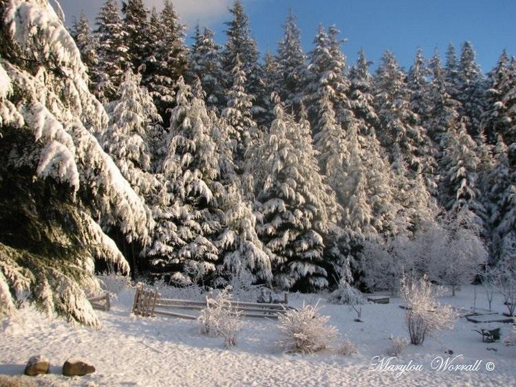 Nouvelles du Canada 136 : Encore de la neige