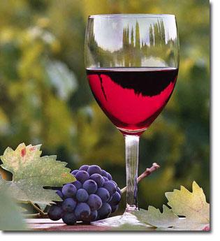 Boire du vin sous prétexte que cela soigne certains maux -