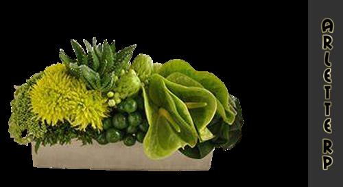 Tubs déco-floral 2