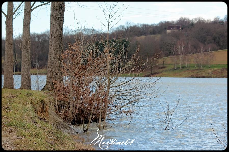 Le lac de Serres-Castet .... suite