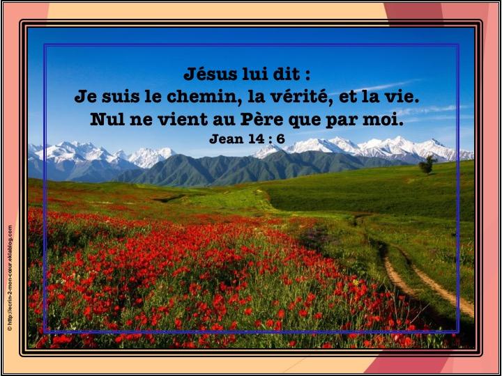 Je suis le chemin, la vérité et la vie - Jean 14 : 6